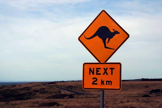 Straßenschild Achtung Kängurus