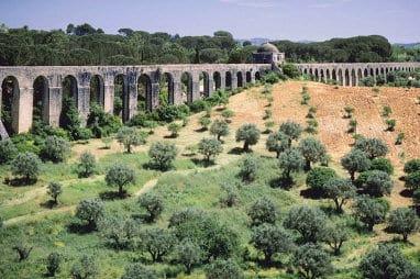 Olivenbäume vor einem antiken Aquedukt