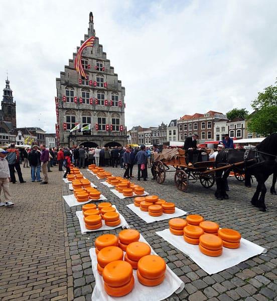Gouda, der Käse aus der gleichnamigen Stadt