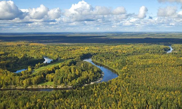 Sibirien im Gebiet Tomsk